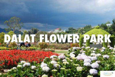 Da-Lat-Flower-Park-festival